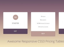 awesome-css3-pricing-tables-elements