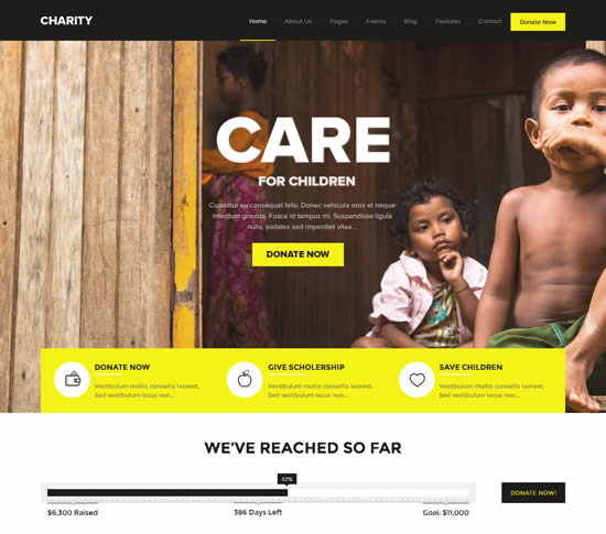 Charity Fundraising WordPress Theme