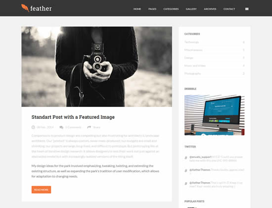 Feather Flat Responsive WordPress Blog Theme