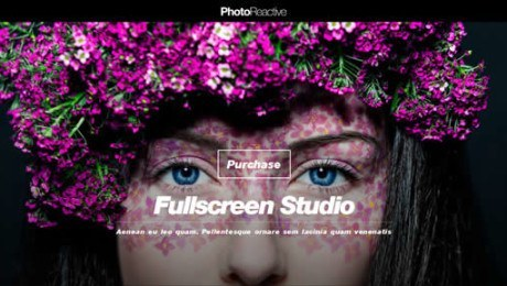 PhotoReactive – Fullscreen Studio for WordPress