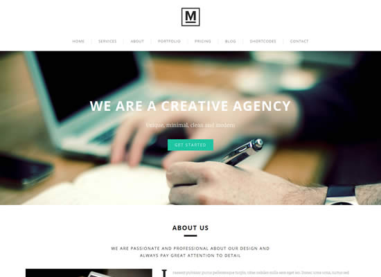 Parallax WordPress Theme