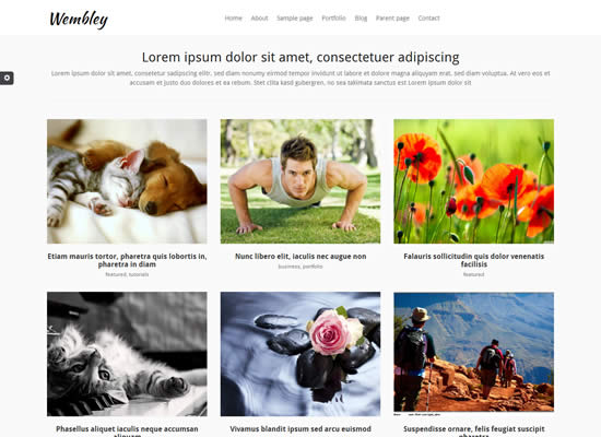 Bootstrap Free Responsive WordPress Theme Wembley