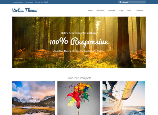 Free Responsive Bootstrap WordPress Themes