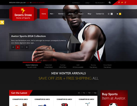 Top 10 Best Sports WordPress Themes | WebDesignBoom