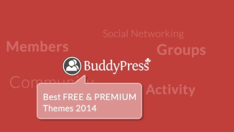 15+ Best WordPress BuddyPress Themes for (August, 2014)