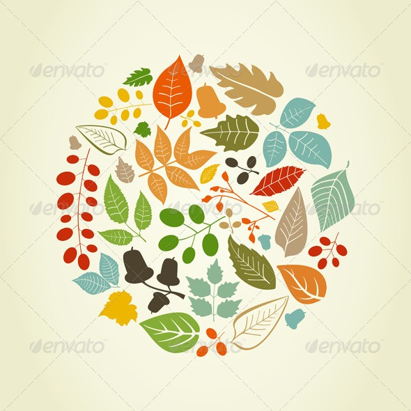 Autumn Graphic