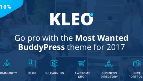 Top Ten BuddyPress Themes